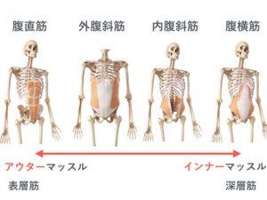 腹筋の画像.001-580x435